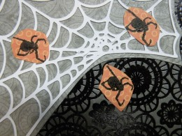 Spiders adhered to spider web on card