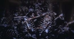 Dark Souls Defeating Gravelord Nito