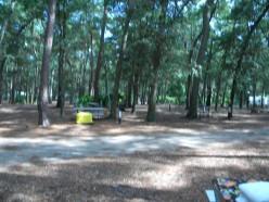 Georgia Campgrounds, Jekyll Island Georgia and Surrounding Areas.