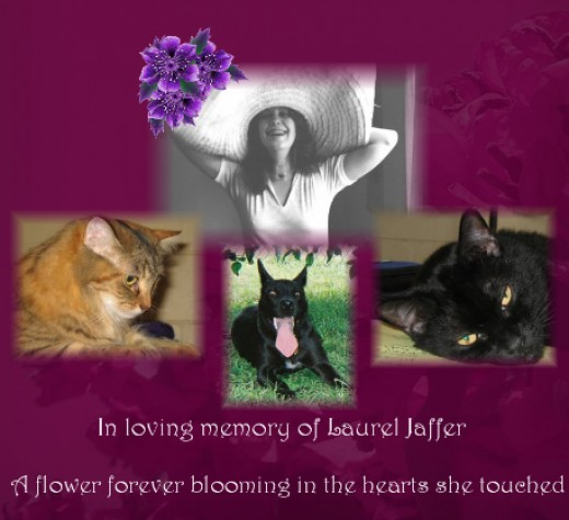 Image created by one of Laurel's Catster friends for everyone to put on their profiles.