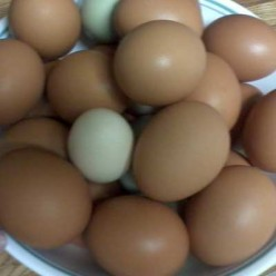 Recipes and Ideas for Using Up the Extra Eggs From Your Hens