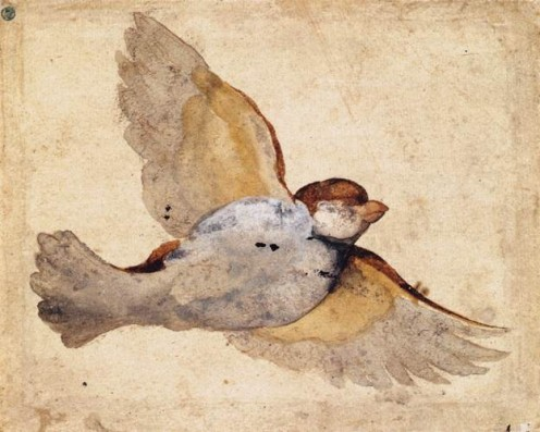 Chalk Study of a Flying Sparrow (circa 1515 - 1520)