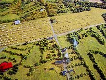 Carnac Stones from above.
