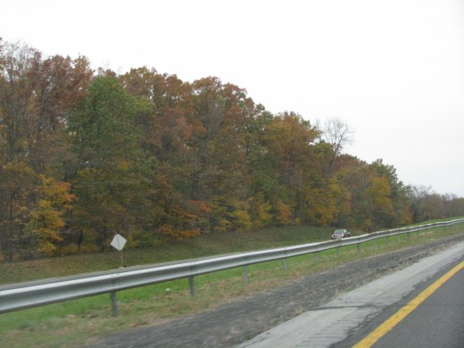 Fall foliage along the NYS Thruway