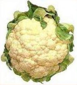 Feeding the Family on a Budget Using Seasonal Foods - Part Four: Cauliflower