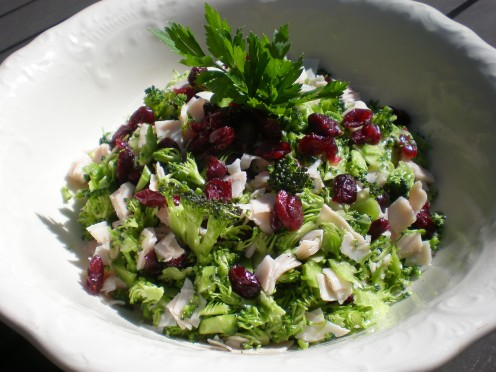 Raw Broccoli and Cranberry Salad Turkey Meat Version