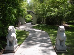 A Chinese Garden - Gallery
