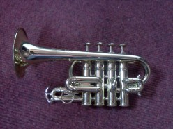 A Piccolo Trumpet. Christmas tree ornamets are available as a number of musical instruments and are some of my favorites.