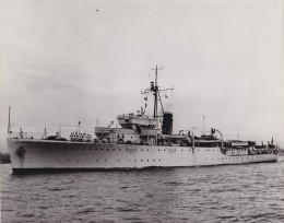 A Grimsby class sloop, Warrego and her sister HMAS Swan displaced around 1060 tons.    Built in the late 1930s Warrego was the economical choice for a survey vessel.