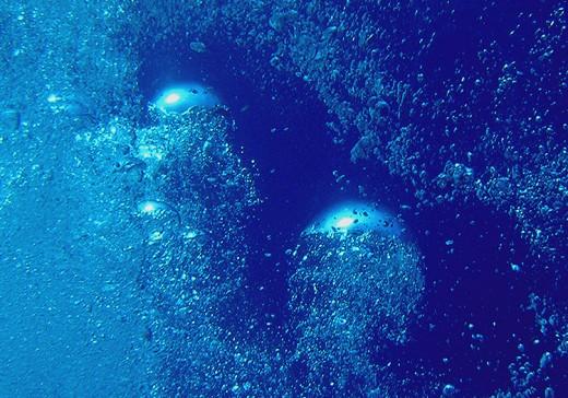 Chrome Jellyfish Ascend