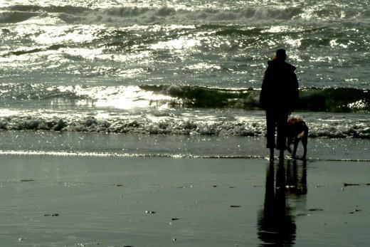 Dog-walker Shoreline Silhouette