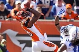 Chad's departure doesn't sting due to A.J Green amazing abilities.