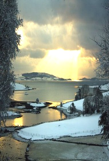 Christmas morning. Strangford Lough