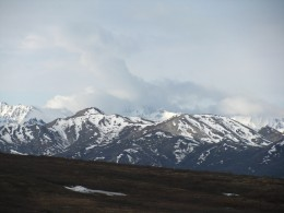 A shot from a tour bus in Denali National Park