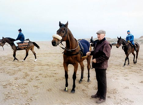 Red Rum is exercised with other racehorses on the beach after he had retired