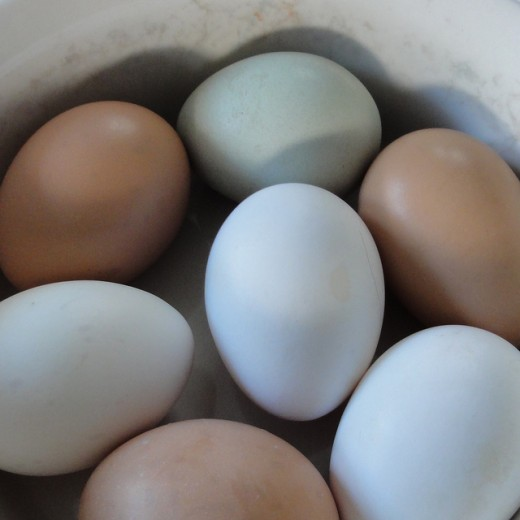 Do not put your eggs in one basket - diversifying your investment provides protection against loss.