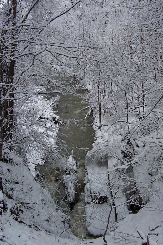 Winter in the gorge