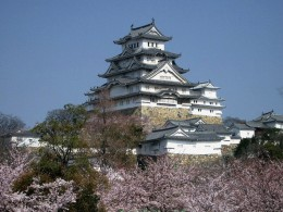 Castle Himeji in Tokyo made more beautiful with Cherry Trees in full bloom