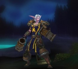 A Night Elf Rogue