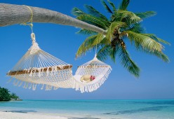 Take a vacation--with your family, with friends..by yourself--just plan an escape--you'll feel better.