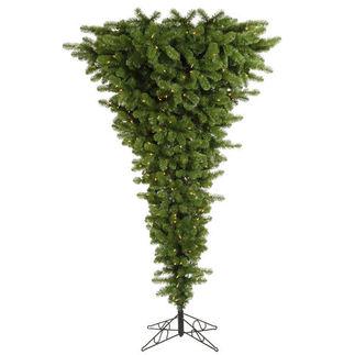 Vickerman A107456 tree