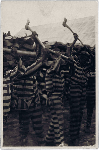 African American convicts working with axes and singing in woodyard, Reed Camp, South Carolina.