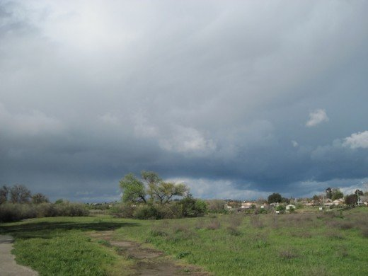 Lawrence Moore Park in Paso Robles gets a brief break from the rain between storms.