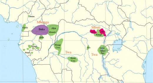 Distribution of Pygmies in the Congo Rainforest. The best known pygmies are the ethnic groups Mbuti, Aka, and Efe of Congo Rainforest