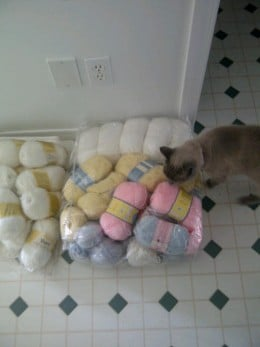My cat checking out the new yarn - donated to me by a de-cluttering coworker