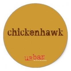 Prose - The Chickenhawk