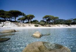 Palombaggia Corsica, Mediterranean Sea