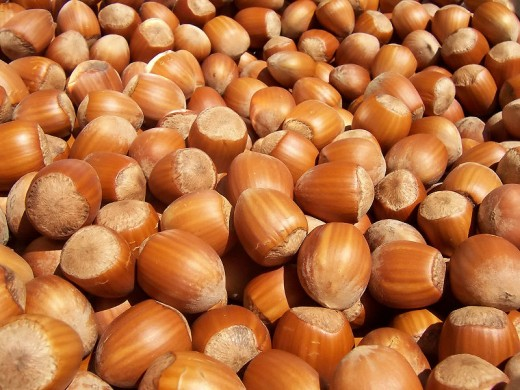 Hazelnuts. Nuts, beans, and whole grains. Plant protein is the most green.