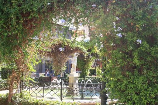 small garden, Valencia