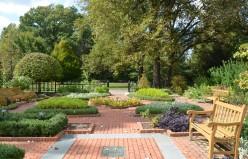 Herb Garden Photos - A Gallery