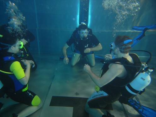 Due to certain physiological factors and the fact that the ocean is not our natural habitat, proper training and certification is required in order to safely enjoy scuba diving.