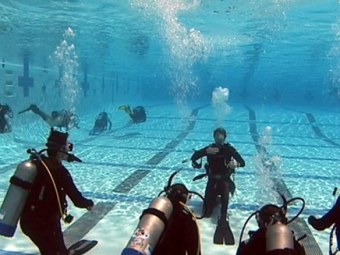 Scuba diving is a group activity. One of diving's golden rule is to always dive with a buddy. However, it is common for people to go diving with a group. The social interaction further enhances the experience of diving.