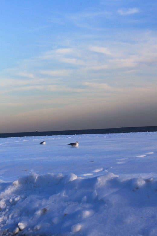 late afternoon looking at the frozen beach in front of Long Island Sound in early February 2011.