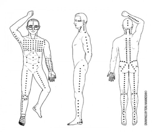 The three views of shiatsu - anterior, lateral and posterior views. Drawings by Toru Namikoshi.