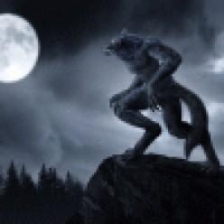 Elder Scrolls V: Skyrim - Werewolf or Vampire?