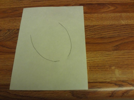I am drawing an oval like shape for the acorn.