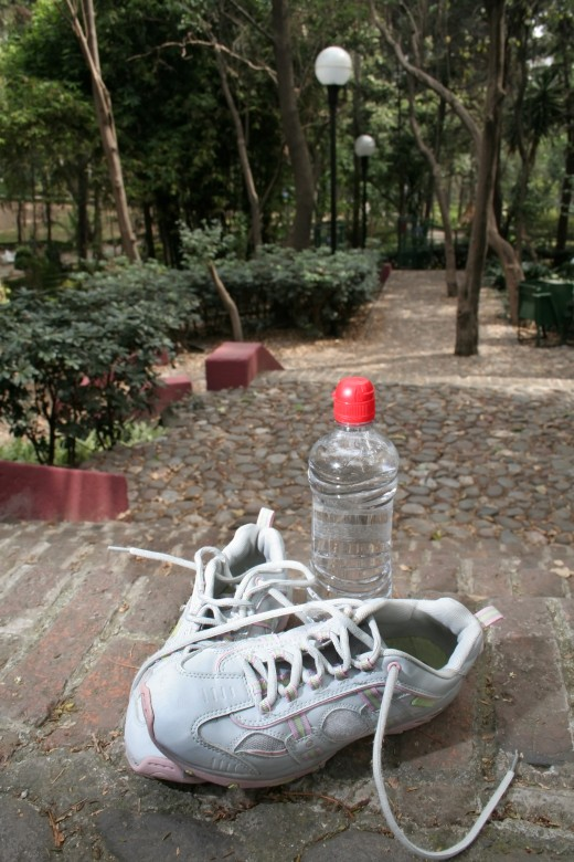 SNEAKERS AND A BOTTLE OF WATER