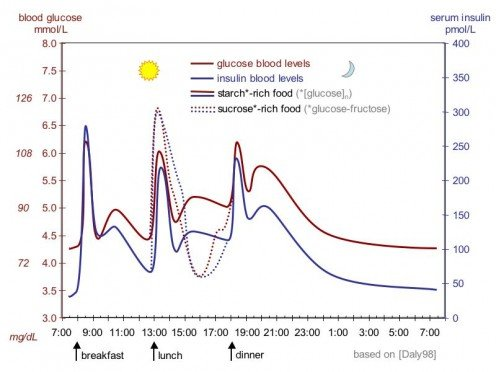 Blood Glucose Variation During the Day