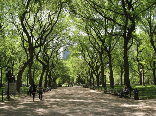 A Walk In The Park May Be All You Need To Break Writers Block