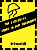 Get this e-guide on Smashwords in almost any electronic format!