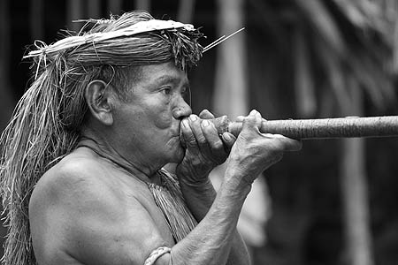 Amazonian man demonstrating the use of a blowgun.