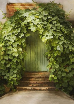 Ivy Door - Sharon Foster