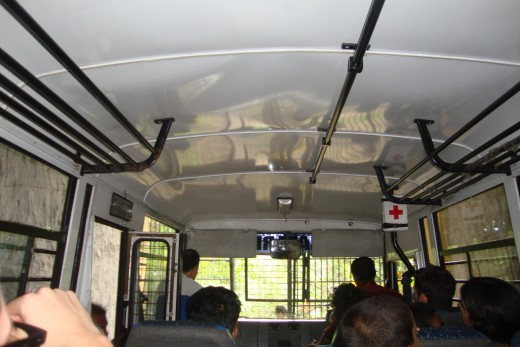 Inside the bus in search of Lion