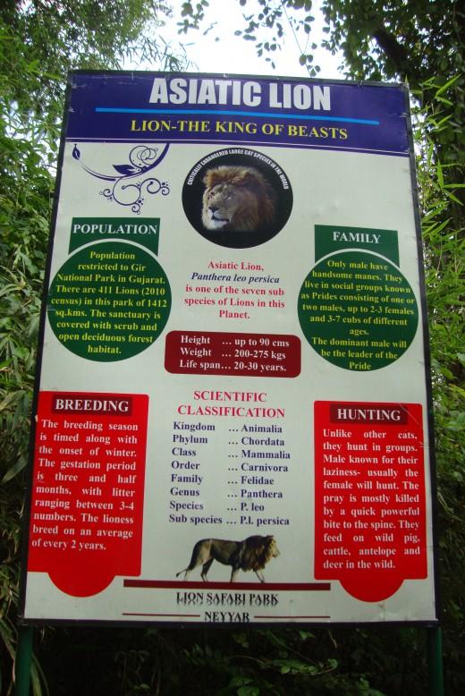 Entrance: Lion Safari Park
