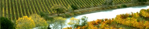 the beautiful Quintessa Vineyards