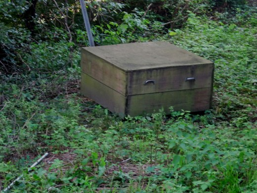 A box I found in the woods.   What's inside?